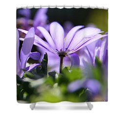 Floral Purple Light  Shower Curtain