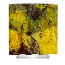 Shower Curtain featuring the photograph In Yellow  by Danica Radman