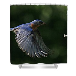 Incoming Shower Curtain by Douglas Stucky