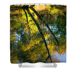 Incredible Colors Shower Curtain