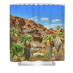 Indian Canyons View In Palm Springs Shower Curtain by Ben and Raisa Gertsberg