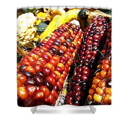Shower Curtain featuring the photograph Indian Corn by Caryl J Bohn