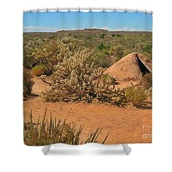 Indian Earth Shelter In The Desert Shower Curtain by John Malone