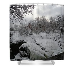 Indian Leap In Winter Shower Curtain