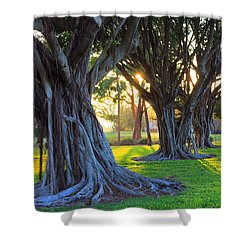 Indian Sunset Shower Curtain