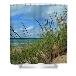 Indiana Dunes Sea Oats Shower Curtain