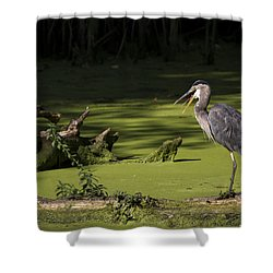 Indigestion Shower Curtain