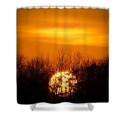 Inferno In The Trees Shower Curtain