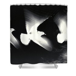 Infrared Gulls Shower Curtain by Jerry McElroy