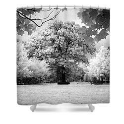 Infrared Majesty Shower Curtain