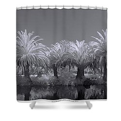 Infrared On A Sunny Afternoon Shower Curtain