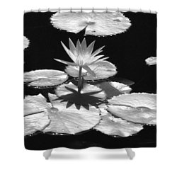 Infrared - Water Lily 02 Shower Curtain by Pamela Critchlow