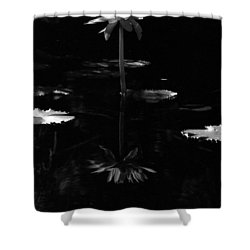 Infrared - Water Lily 03 Shower Curtain by Pamela Critchlow