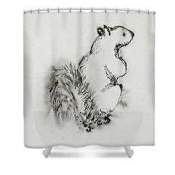 Ink Squirrel Shower Curtain