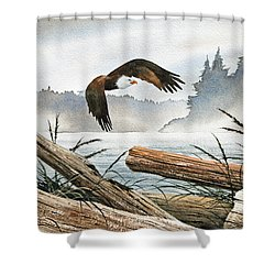 Inland Sea Eagle Shower Curtain by James Williamson
