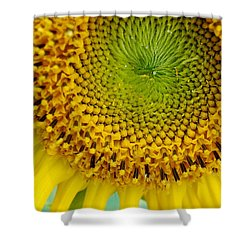 Inner Peace Forms Within This Sweet Yellow Sunflower Shower Curtain by Eunice Miller