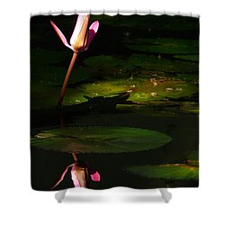 Shower Curtain featuring the photograph Inner Peace by Evelyn Tambour