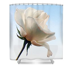 Shower Curtain featuring the photograph Innocence by Deb Halloran