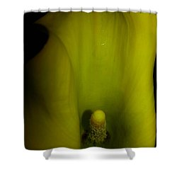 Inside A Lily Shower Curtain