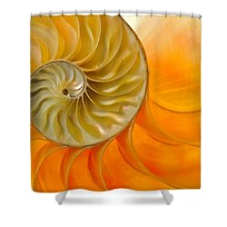 Inside A Nautilus Shell Shower Curtain by David and Carol Kelly
