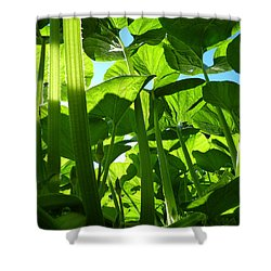 Inside Another World Shower Curtain