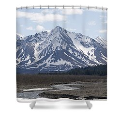 Inside Denali National Park 4 Shower Curtain by Tara Lynn