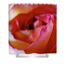 Inside Edge Shower Curtain by Rona Black