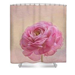 Inside Shower Curtain by Kim Hojnacki