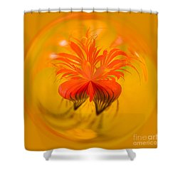 Inside Out Nasturtium Shower Curtain by Anne Gilbert