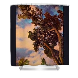 Inspired By Maxfield Parrish Shower Curtain by Mary Lee Dereske