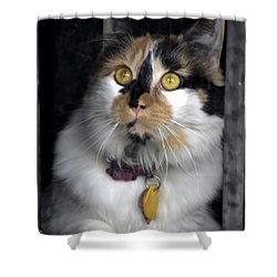 Intense Cleo Shower Curtain by Michael Frank Jr