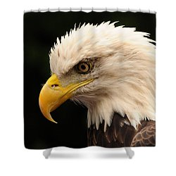 Intense Stare Shower Curtain