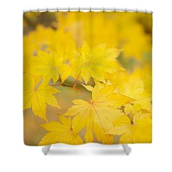 Intensely Yellow Shower Curtain by Anne Gilbert