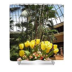 Shower Curtain featuring the photograph Interior Decorations Butterfly Gardens Vegas Golden Yellow Tulip Flowers by Navin Joshi
