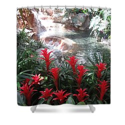Shower Curtain featuring the photograph Interior Decorations Water Fall Flowers Lights Shades by Navin Joshi