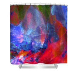 Shower Curtain featuring the digital art Interior by Richard Thomas