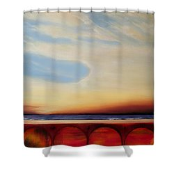 Internal Fires Shower Curtain by Albert Puskaric