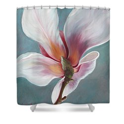 Intimate Apparel Shower Curtain by Sandi Whetzel