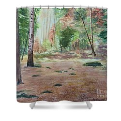 Into The Forest Shower Curtain by Martin Howard