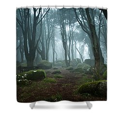 Into The Light Shower Curtain