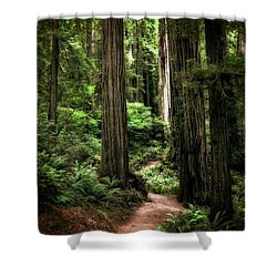 Into The Magical Forest Shower Curtain