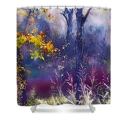 Into The Mist - A Dream State Shower Curtain