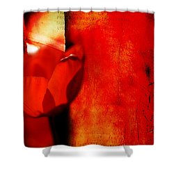 Into The Ragged Meadow Shower Curtain