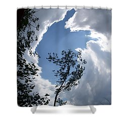 Shower Curtain featuring the photograph Into The Sky by Aimee L Maher Photography and Art Visit ALMGallerydotcom