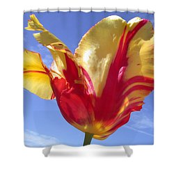 Into The Sky Shower Curtain