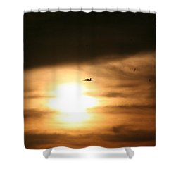 Shower Curtain featuring the photograph Into The Sun by David S Reynolds
