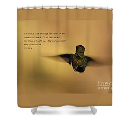 Shower Curtain featuring the photograph Into The Sunset by Debby Pueschel