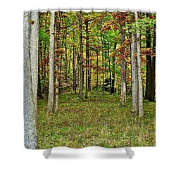 Into The Void Shower Curtain by Frozen in Time Fine Art Photography