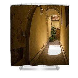 Shower Curtain featuring the photograph Invitation by Georgia Mizuleva