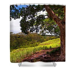 Invitation To Shadow Place. Chamarel. Mauritius Shower Curtain by Jenny Rainbow